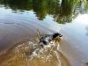 kyara lekker zwemmen!